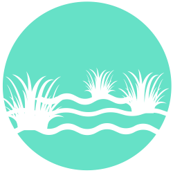 Stormwater/Constructed Wetlands